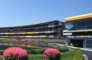 川口オートレース場