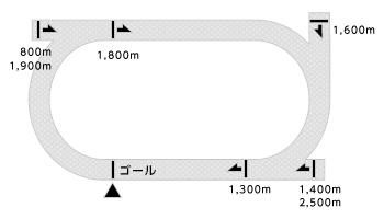 名古屋競馬場コース画像