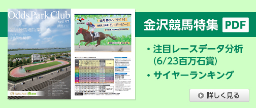 南関東競馬 ライブ
